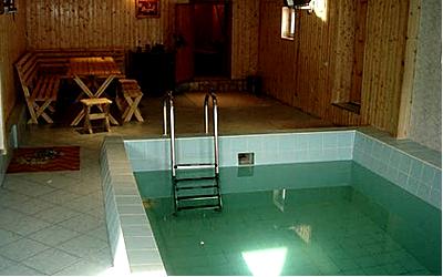 уютная сауна с бассейном